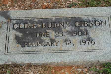 GIBSON, CLINE BURNS - Russell County, Virginia | CLINE BURNS GIBSON - Virginia Gravestone Photos