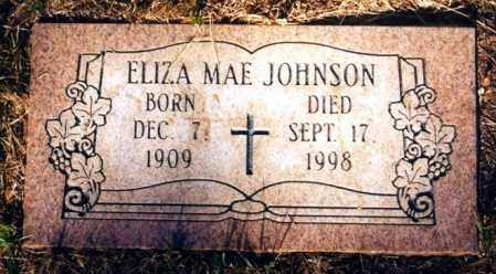 TAYLOR JOHNSON, ELIZA MAE - Russell County, Virginia | ELIZA MAE TAYLOR JOHNSON - Virginia Gravestone Photos