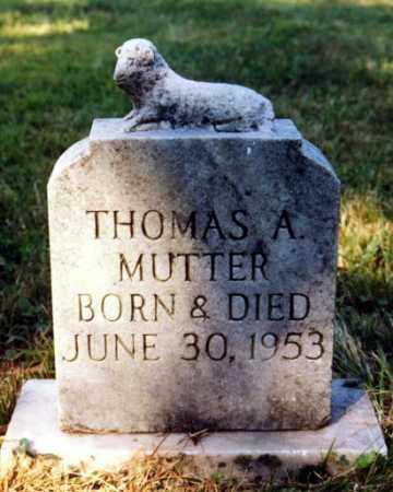 MUTTER, THOMAS A - Russell County, Virginia | THOMAS A MUTTER - Virginia Gravestone Photos