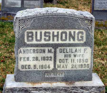 BUSHONG, ANDERSON M. - Shenandoah County, Virginia | ANDERSON M. BUSHONG - Virginia Gravestone Photos