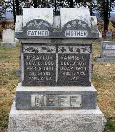 NEFF, DANIEL SAYLOR - Shenandoah County, Virginia | DANIEL SAYLOR NEFF - Virginia Gravestone Photos