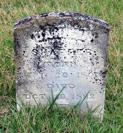 SHAFFER, DANIEL - Shenandoah County, Virginia | DANIEL SHAFFER - Virginia Gravestone Photos