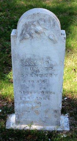 HUNTER, ANNIE B. - Westmoreland County, Virginia | ANNIE B. HUNTER - Virginia Gravestone Photos