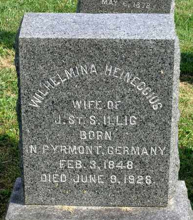 HEINECCIUS ILLIG, WILHELMINA - Lexington (City of) County, Virginia | WILHELMINA HEINECCIUS ILLIG - Virginia Gravestone Photos