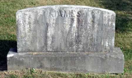 JAMES, ALICE P. - Lexington (City of) County, Virginia | ALICE P. JAMES - Virginia Gravestone Photos