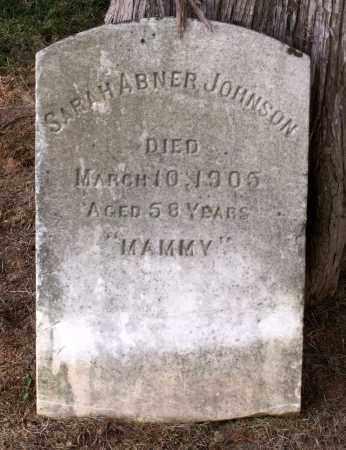 ABNER JOHNSON, SARAH - Lexington (City of) County, Virginia   SARAH ABNER JOHNSON - Virginia Gravestone Photos