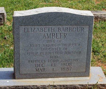 BARBOUR AMBLER, ELIZABETH - Lynchburg (City of) County, Virginia | ELIZABETH BARBOUR AMBLER - Virginia Gravestone Photos