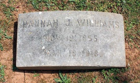 WILLIAMS, HANNAH J. - Lynchburg (City of) County, Virginia | HANNAH J. WILLIAMS - Virginia Gravestone Photos
