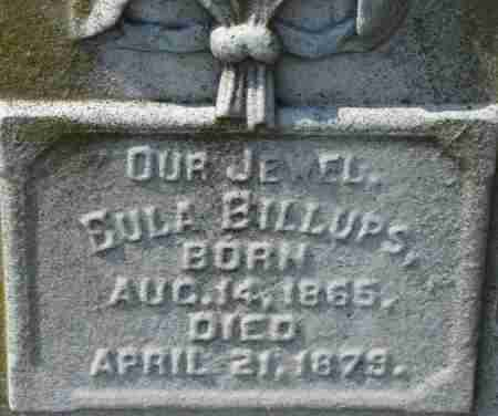 BILLUPS, EULA - Norfolk (City of) County, Virginia | EULA BILLUPS - Virginia Gravestone Photos