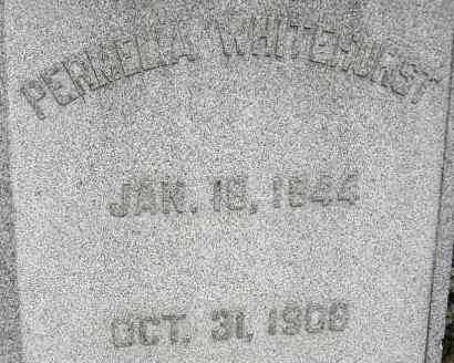 WHITEHURST, PERMELIA - Norfolk (City of) County, Virginia | PERMELIA WHITEHURST - Virginia Gravestone Photos