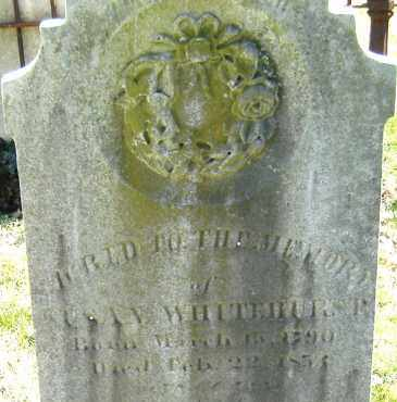 WHITEHURST, SUSAN - Norfolk (City of) County, Virginia | SUSAN WHITEHURST - Virginia Gravestone Photos