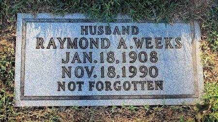WEEKS, RAYMOND A. - Roanoke (City of) County, Virginia | RAYMOND A. WEEKS - Virginia Gravestone Photos
