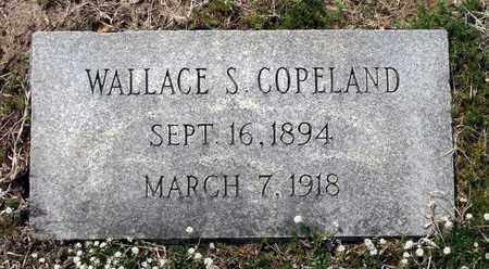 COPELAND, WALLACE S. - Suffolk (City of) County, Virginia | WALLACE S. COPELAND - Virginia Gravestone Photos