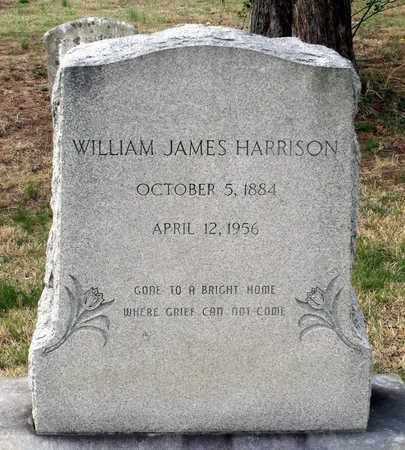 HARRISON, WILLIAM JAMES - Suffolk (City of) County, Virginia | WILLIAM JAMES HARRISON - Virginia Gravestone Photos