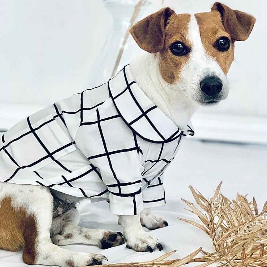 Pijama Colab