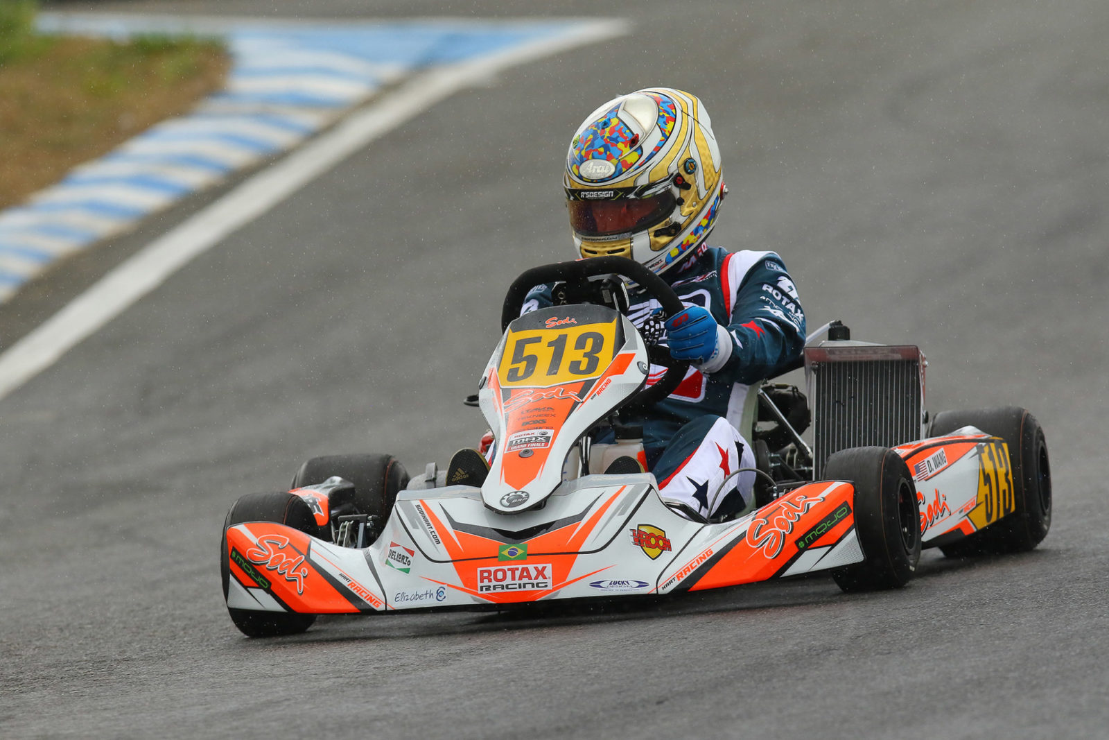 Kart 513 at 2018 Rotax MAX Challenge Grand Finals Brazil