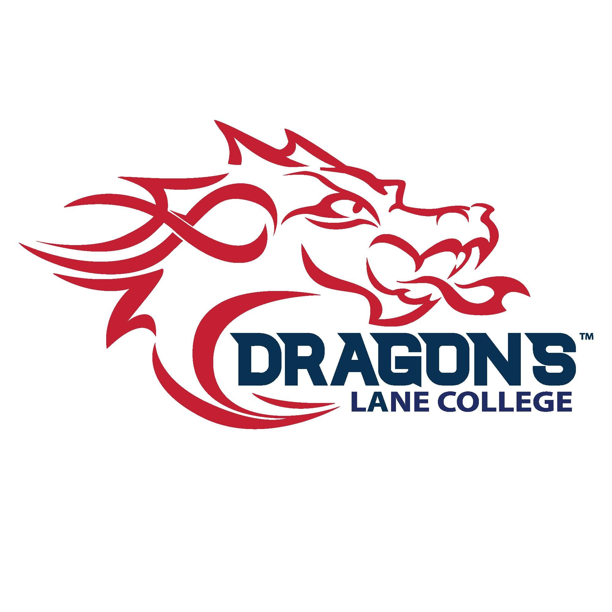 Dragon Logo Full