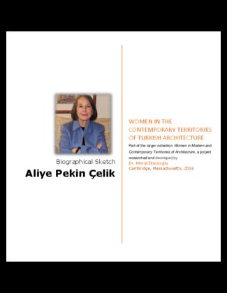 Aliye Pekin Celik Bio Archnet