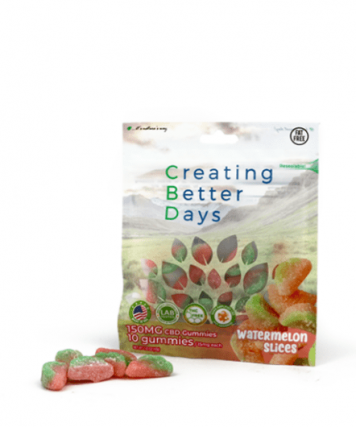 Creating Better Days Watermelon Slices