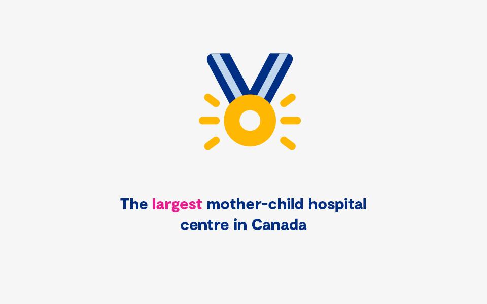 En Statistique Plus Important Centre Hospitalier