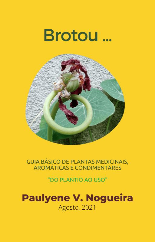E-book Plantas Medicinais, aromáticas e condimentares