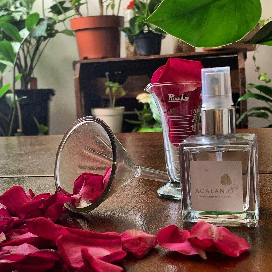 Perfume Arruda
