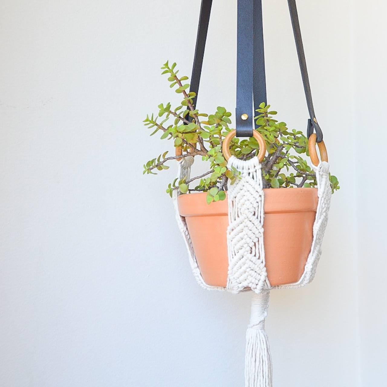 Suporte de Plantas Couro