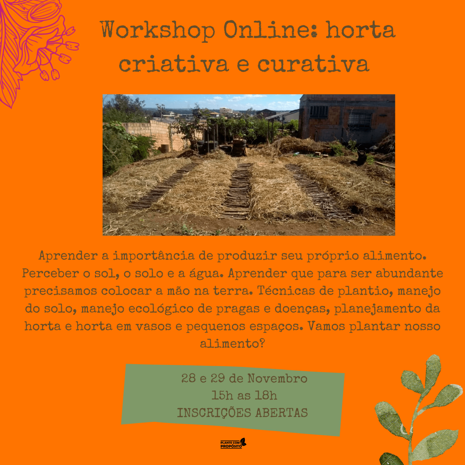 Workshop Online: horta criativa e curativa [ULTIMA TURMA]