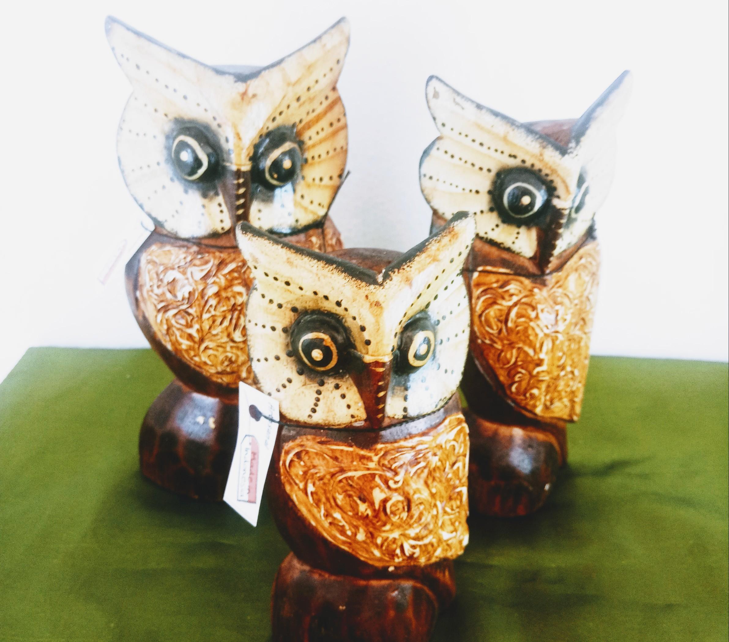 Corujas família/trio em madeira importadas da Indonésia