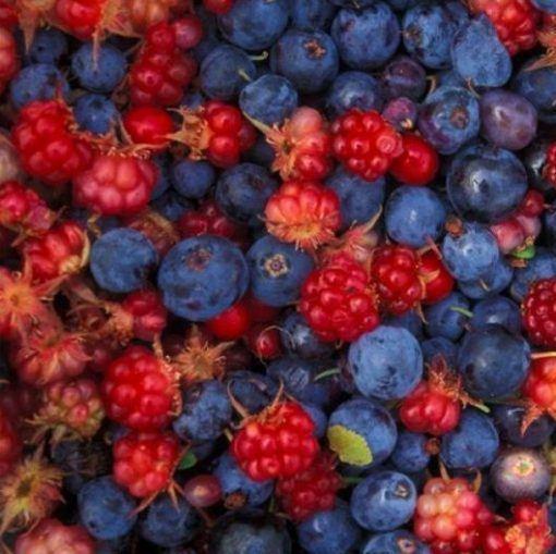 Óleo Essencial  de Frutas Vermelhas