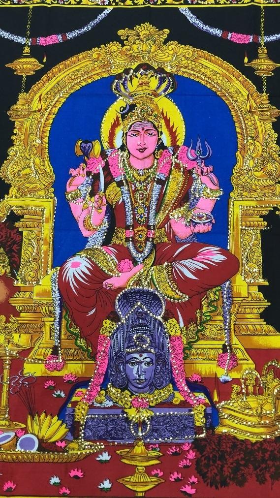 Panô Deuses Indianos VISHINU
