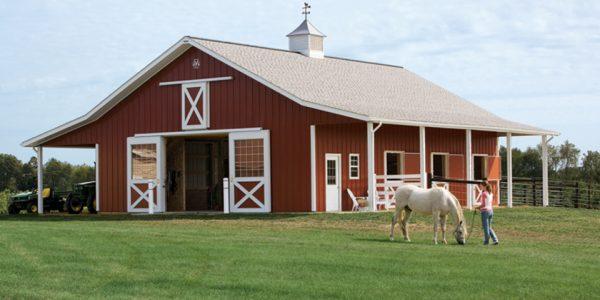 Florida-horse-barn