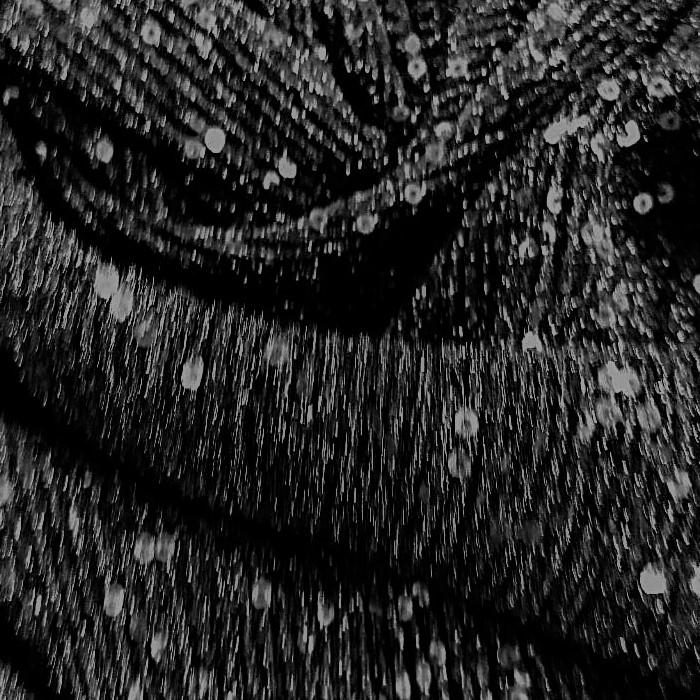 Tecido Malha Lurex Canelada Bordado Preto