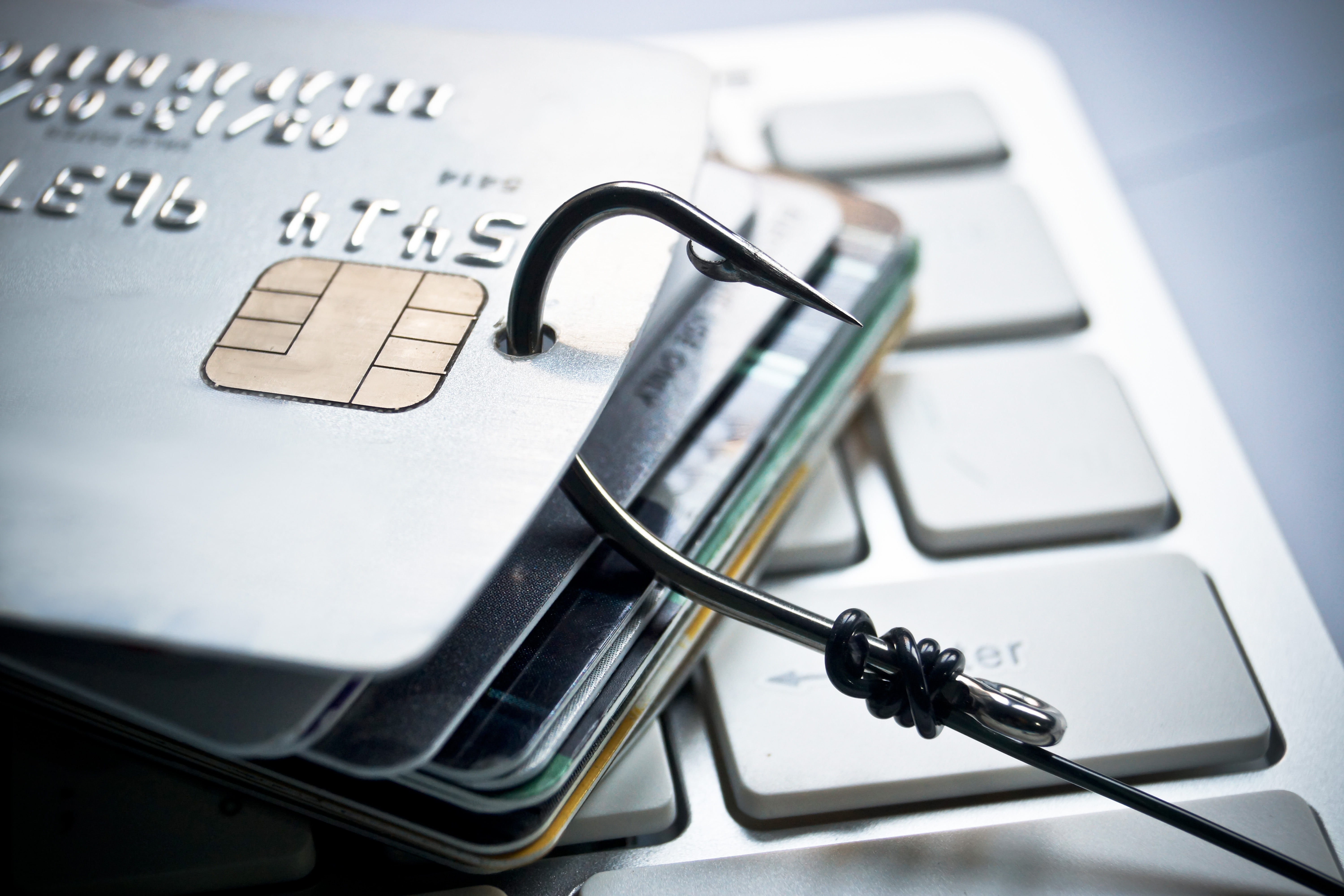Major Keys for Identifying Different Kinds of Phishing Scams