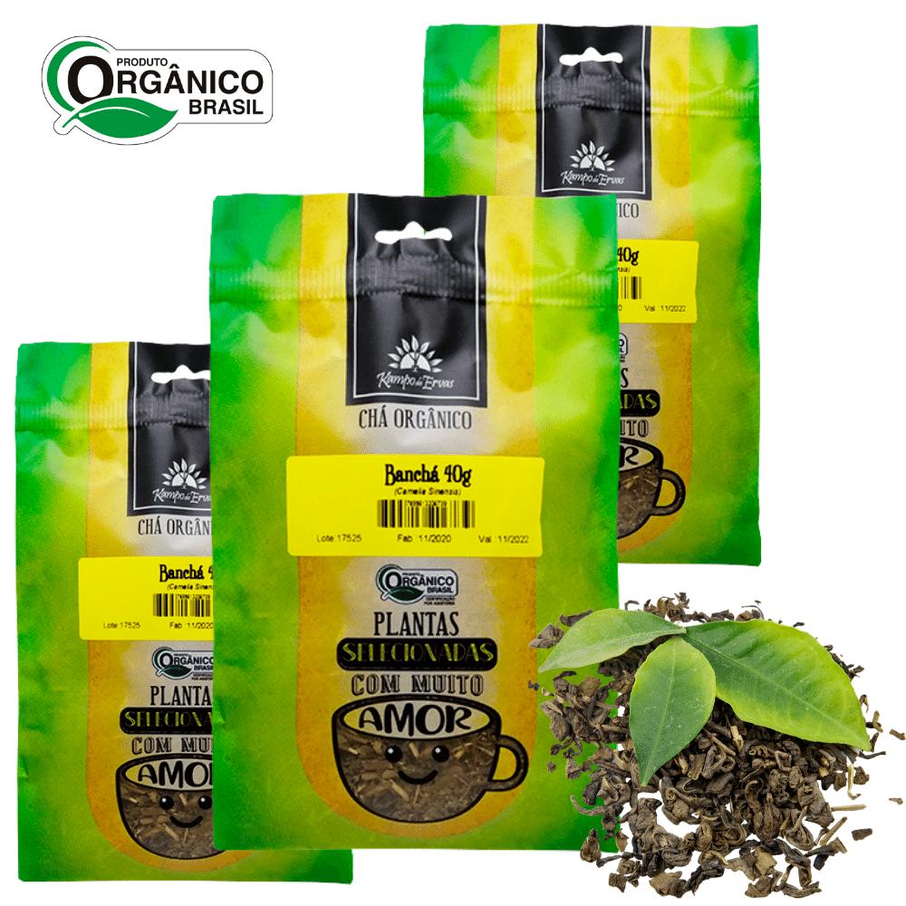 3 Banchá 100% Folhas novas e brotos 40g Orgânico Certificado