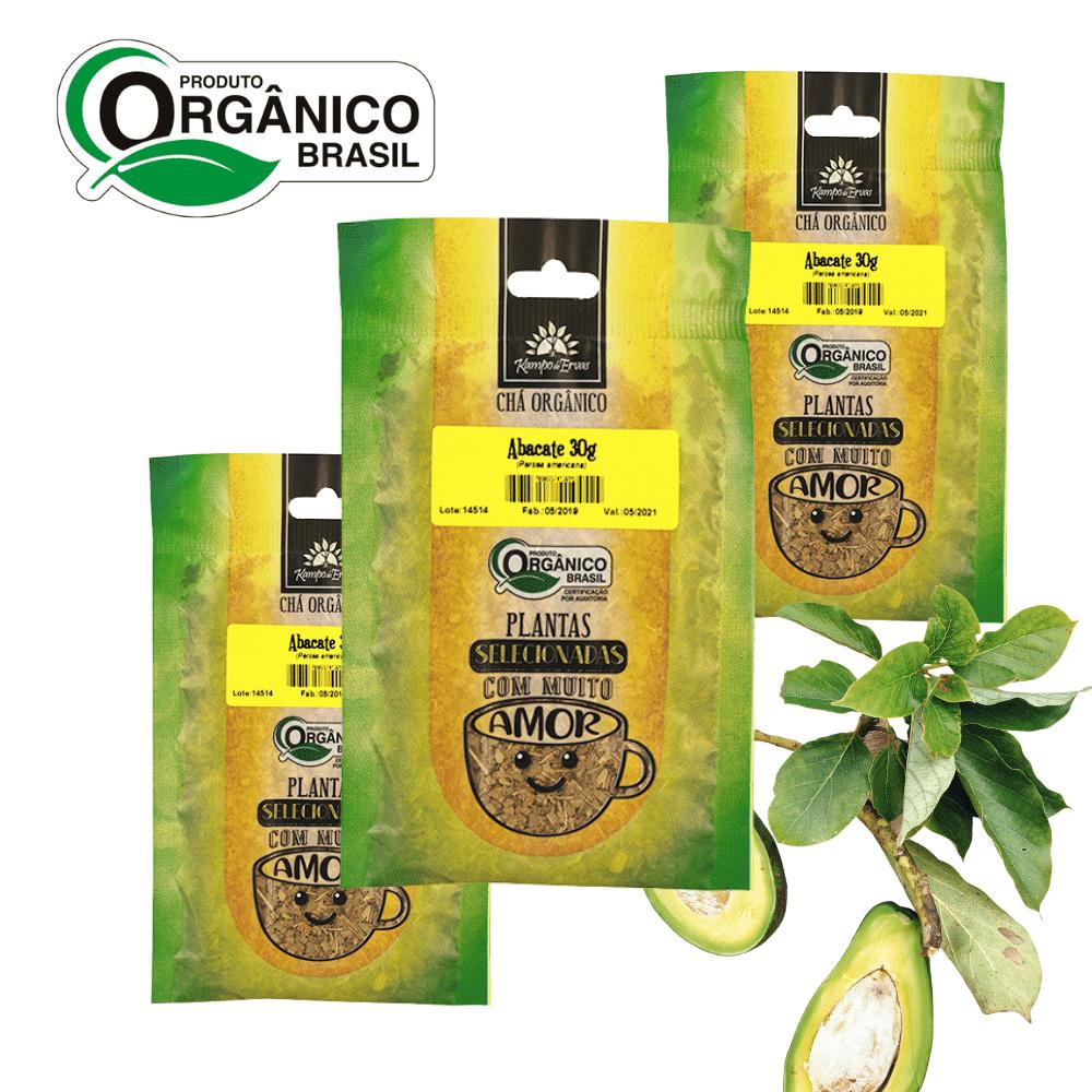 Abacate Chá Orgânico Certif PURO 100% Folhas 3 und 30g cada