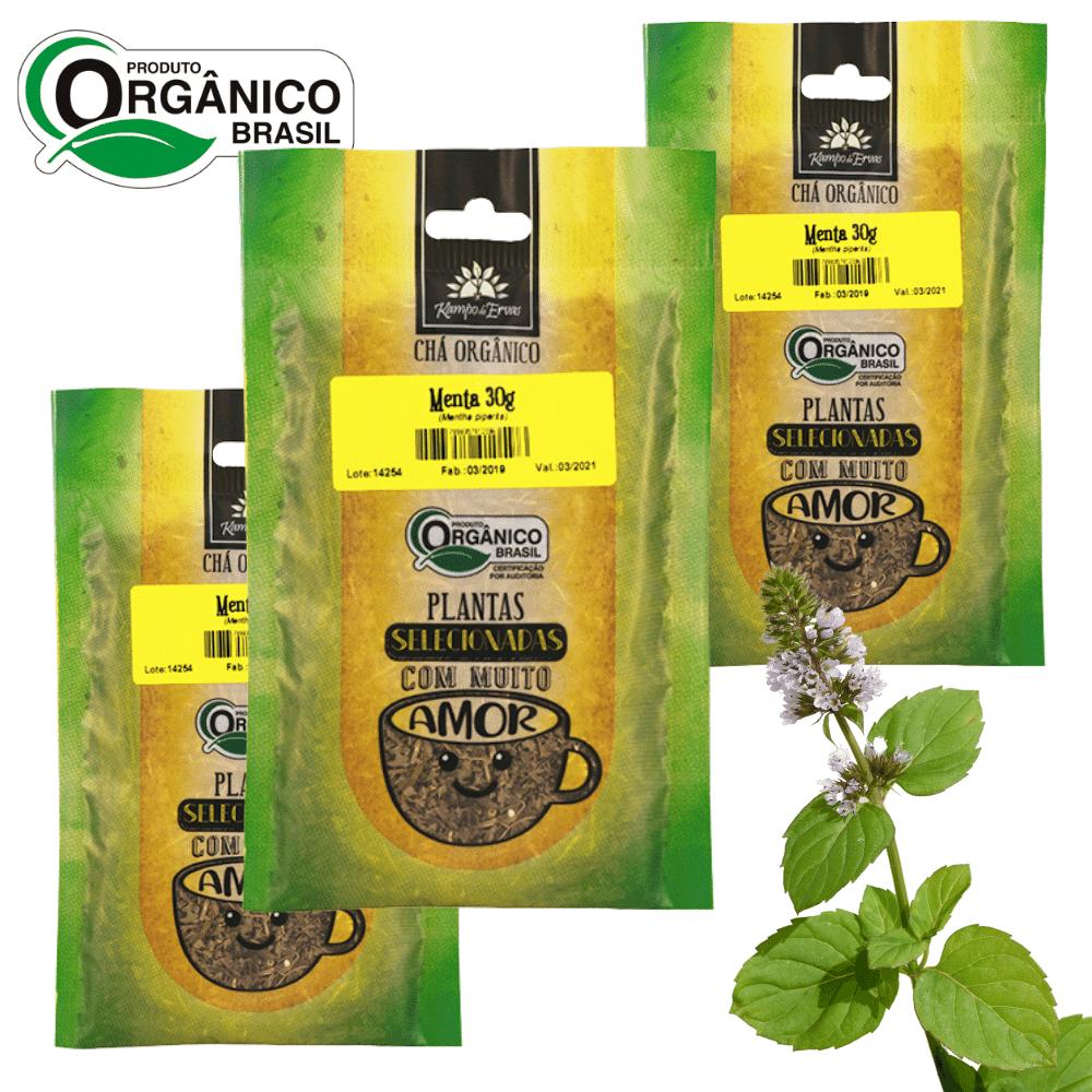 3 Chás de Menta Piperita 100% Folhas 30 g Orgânica e Certif