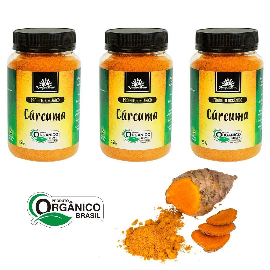 Cúrcuma Pura 3 potes de 250g cada - Orgânica e Certificada