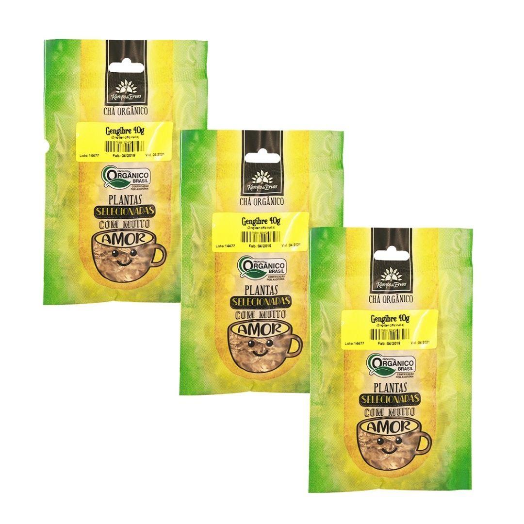Gengibre Orgânico 100% Lascas 3 und de 40g Kampo de Ervas