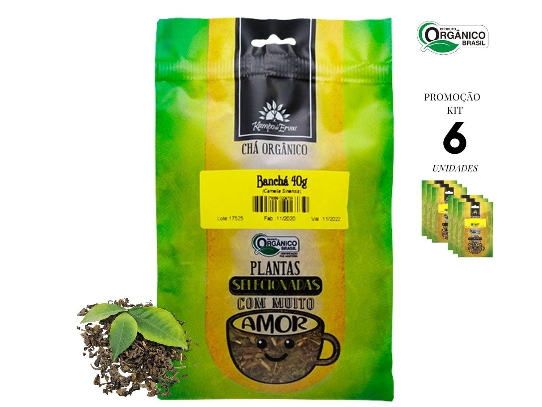Banchá Chá Orgânico Folhas novas brotos Kampo de Ervas 6 und