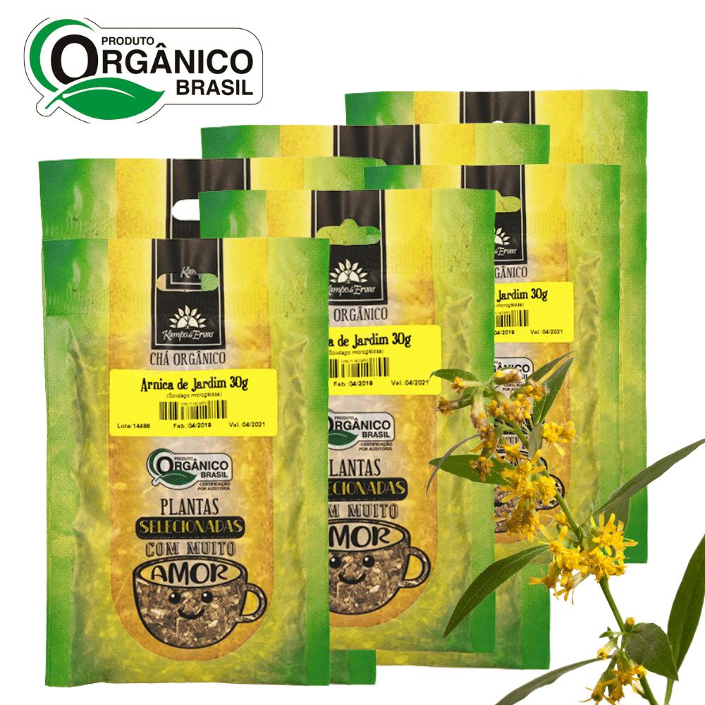6 Chás de Arnica de Jardim 100% Folhas 30g Orgânica e Certif