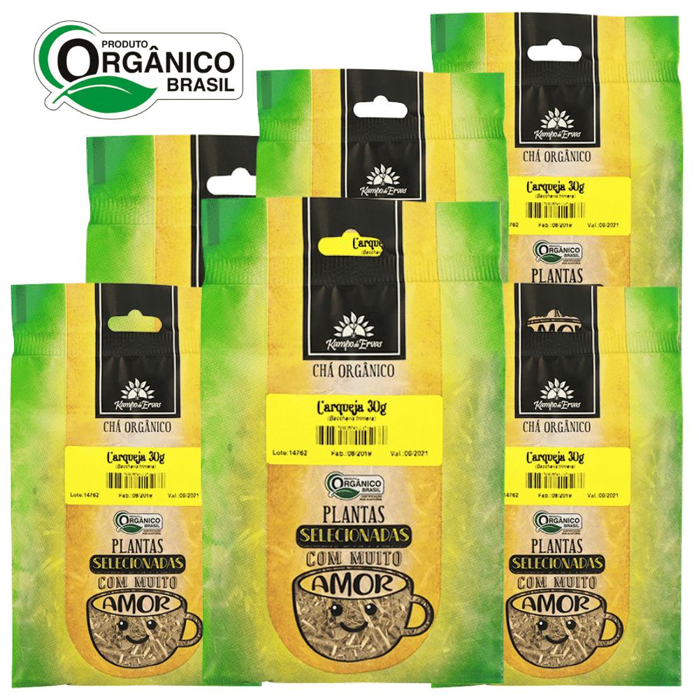 6 Chás de Carqueja PURA 30 g cada - Orgânico e Certificado