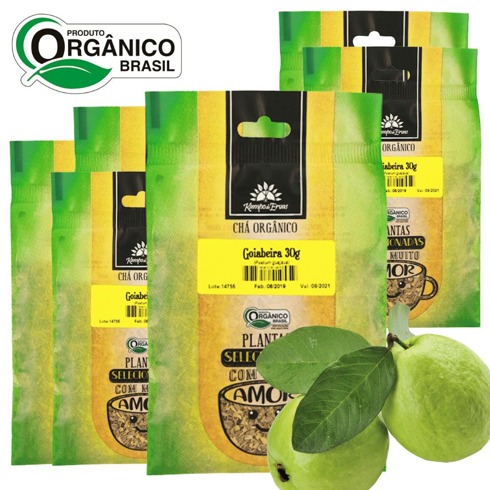 Goiaba Chá da Folha Orgânica 6 und - 30g cada Kampo de Ervas