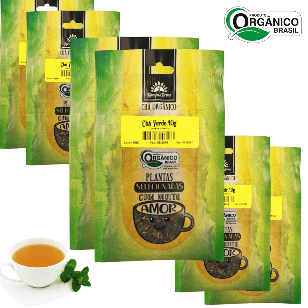 Chá Verde Orgânico 100% Folhas 6 und 40g cada Kampo de Ervas