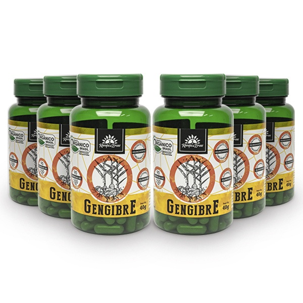 Cúrcuma Orgânica Kampo de Ervas 600Mg 6 frascos 90 cáps cada