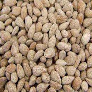 Amendoa Torrada c/ Sal - Granel - 100g