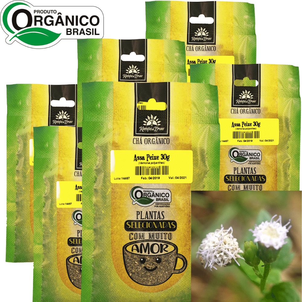 Assa-peixe Chá Orgânico 100% Folhas Kampo de Ervas 6und 30g