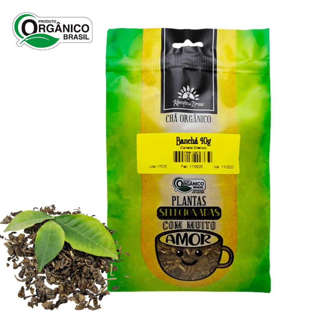 Banchá chá 100% Folhas novas e brotos 40g Orgânico Certific