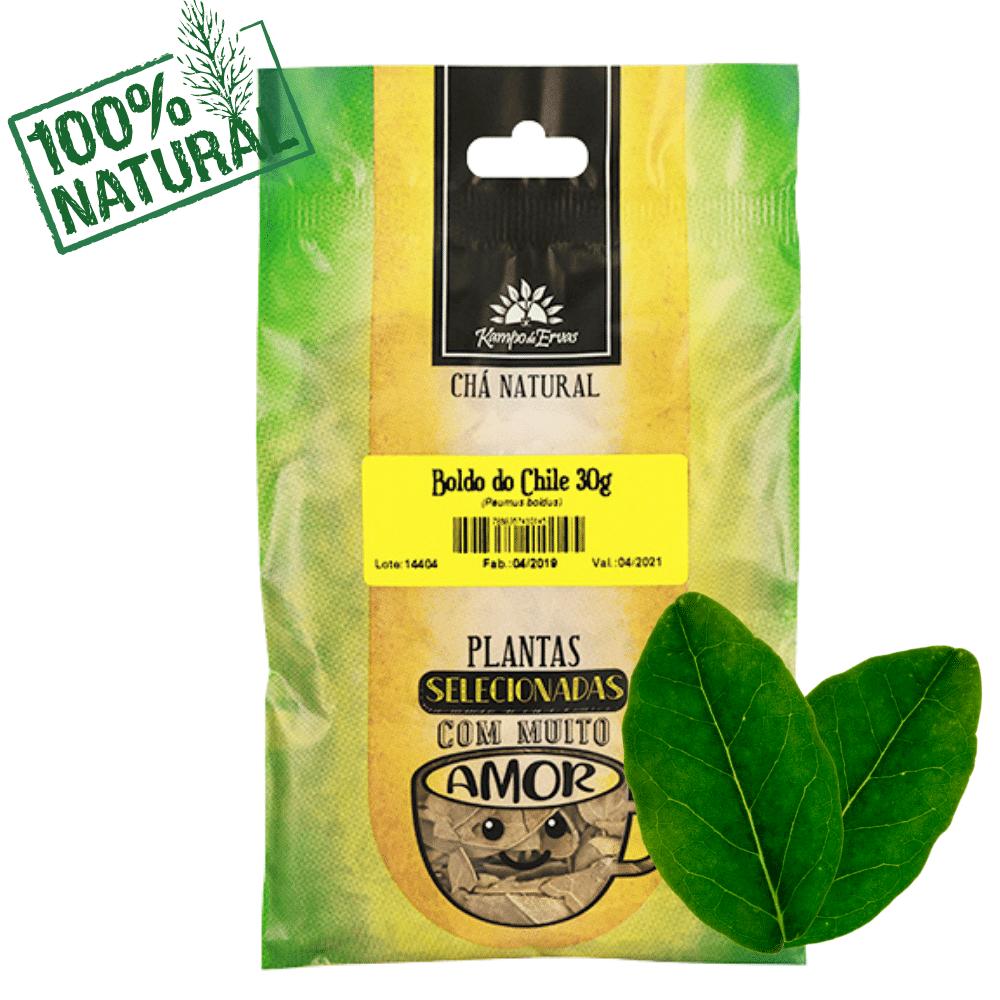 Boldo do Chile PURO 100% Natural 30g Kampo de Ervas