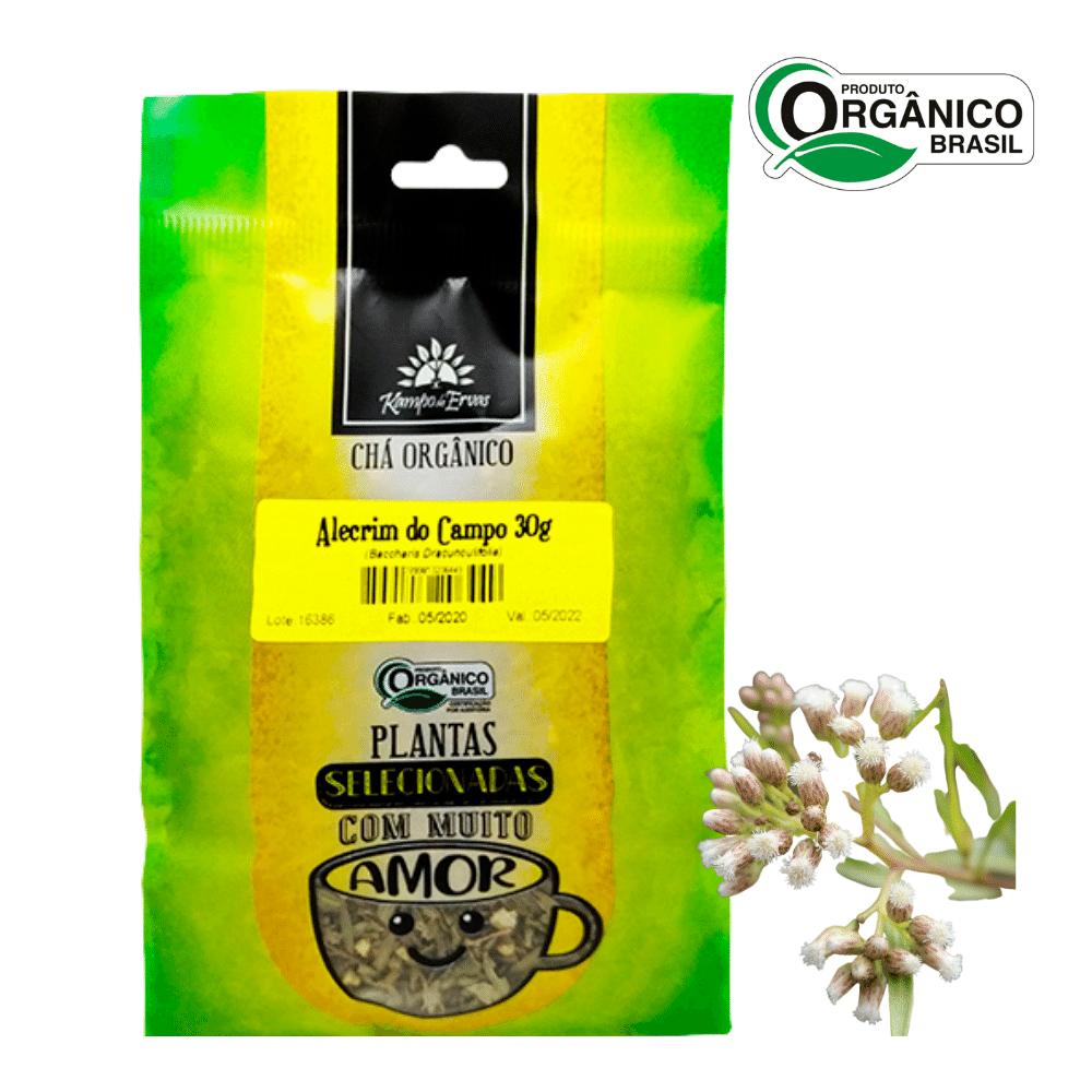 Alecrim do Campo Orgânico Chá PURO 30 g Kampo de Ervas